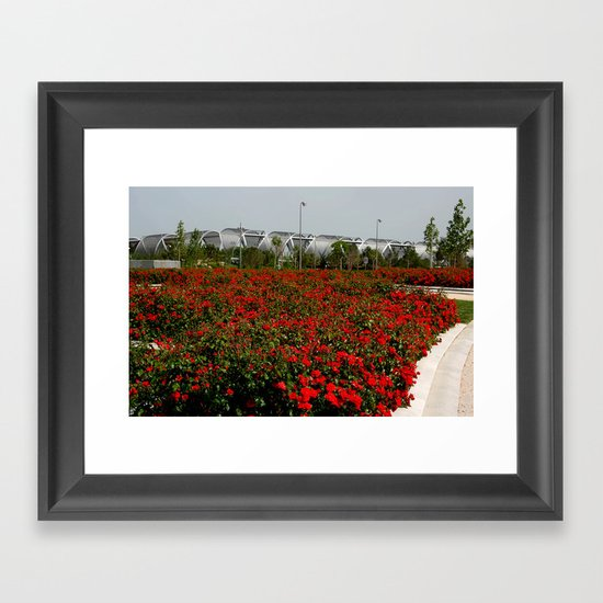 En un campo de rosas Framed Art Print