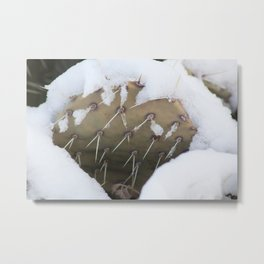 Prickly Pear Snow Metal Print