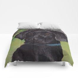 Black Lab Comforters