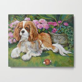 Cavalier King Charles Spaniel in the Garden Painting Metal Print