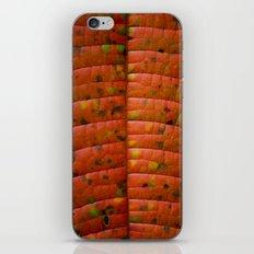 Hoja iPhone & iPod Skin