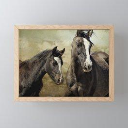 Feldspar and Ohanzee Framed Mini Art Print