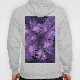 Purple crystals Hoody