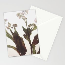 Leaf & Floral Stationery Cards