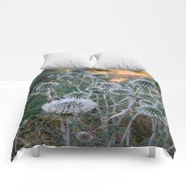 Seed Head Of Leek Flower Allium Sphaerocephalon  Comforters