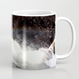 Box Canyon Falls - Rainbow on the Mist Coffee Mug