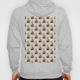 Red Fox Pattern Hoody