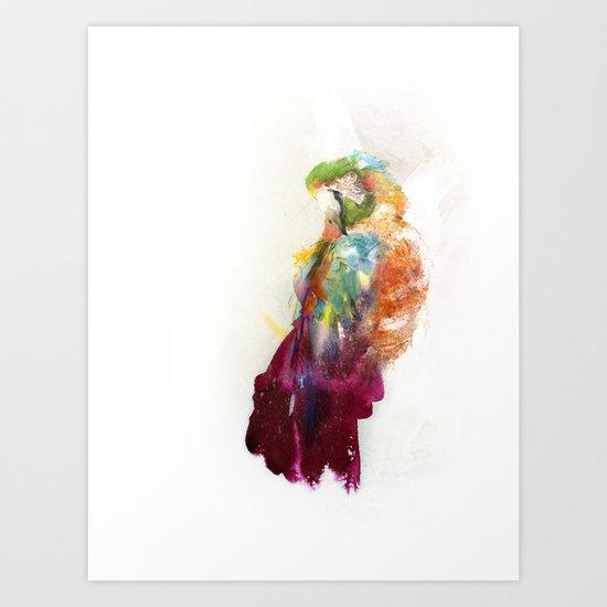 The parrot Art Print