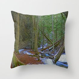 The Trail to the Falls - Nature Photo HDR Throw Pillow