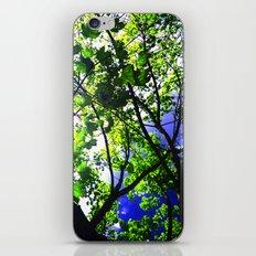 Bright Sky iPhone & iPod Skin