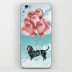 Dachshund Drift iPhone & iPod Skin