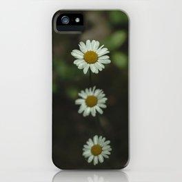 Dark Daisy iPhone Case