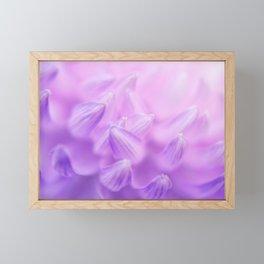 Pearl Petal Kiss | pink flower, pastel flowers, purple floral pattern, cute dahlia petals, macro Framed Mini Art Print