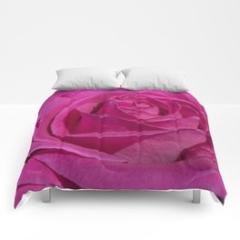 Valentine's Day Roses 30 Comforters
