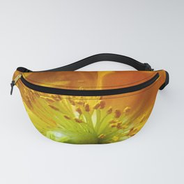 Yellow Moon Fanny Pack