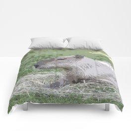 capybara Poster Comforters