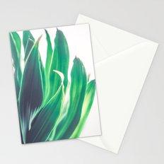 Dracaena Leaves Stationery Cards