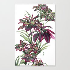 Tropical Leaves Sing Canvas Print