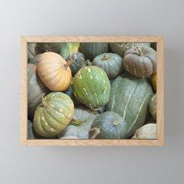 Assorted pumpkins Framed Mini Art Print