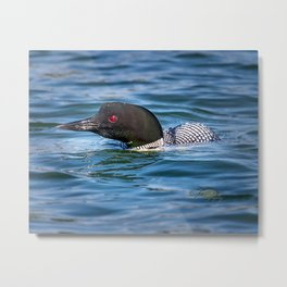 Mothers Day Loon Metal Print
