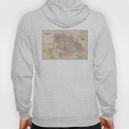 Vintage Map of Flushing Queens (1873) Hoody