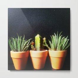 Mini Plants Pots Metal Print