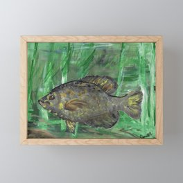 Black Crappie Fish in River Water Framed Mini Art Print