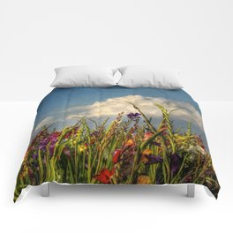 colored swords - field of Gladiola flowers Comforters