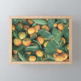 Oranges Framed Mini Art Print
