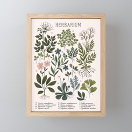 Herbarium ~ vintage inspired botanical art print ~ white Framed Mini Art Print