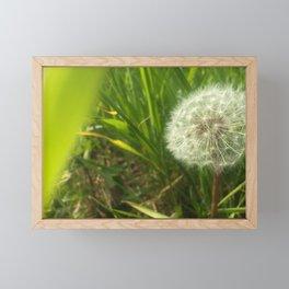 Make a Wish Dandelion Framed Mini Art Print
