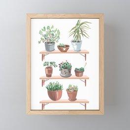 flowerpots on the shelves Framed Mini Art Print