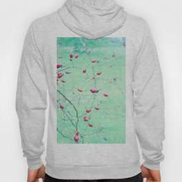 Red Berrys on light Green Ground Hoody