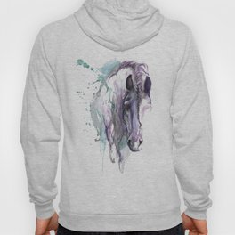 horse with braided mane Hoody