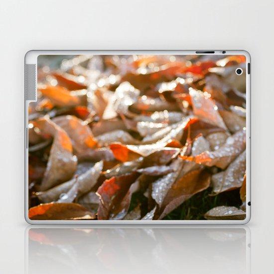The Fallen Laptop & iPad Skin