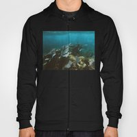 Mexican Caribbean Sealife Hoody