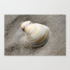 Shell in the Sand Canvas Print