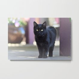 The Cutest Bad Luck Metal Print
