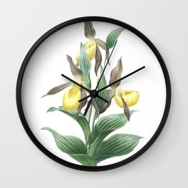 Nature, botanical print, flower poster art of  Lady's-Slipper Orchid Wall Clock