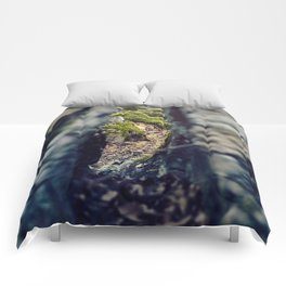The Cove Comforters