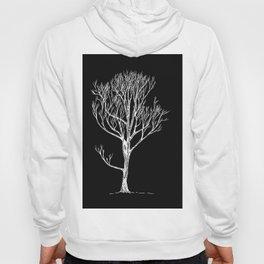 White Elm Hoody