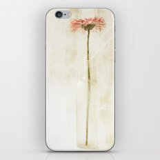 The Long of It iPhone & iPod Skin