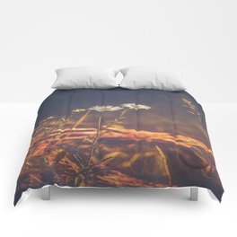 Promised Days Comforters