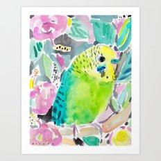 DISCO THE PARAKEET Art Print