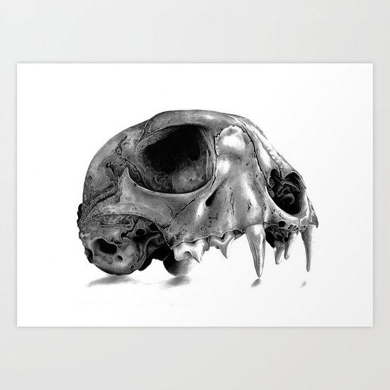 Kitten Skull Art Print