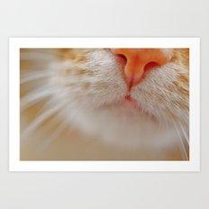 Ginger Cat Art Print
