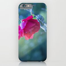 Last rows of summer iPhone 6s Slim Case