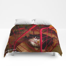 Cat in a Cart (Gracie Queen of Chicago Collection) Comforters
