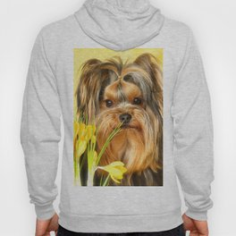 Spring Yellow Crocuses With Yorkie Puppy #decor #society6 Hoody