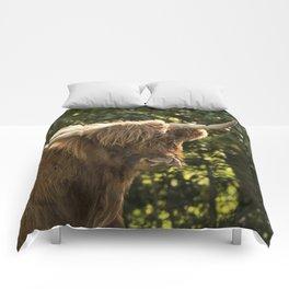 Scottish Highland cow Comforters